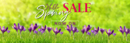 Eyres Home Chesterfield - Spring Sale Now On